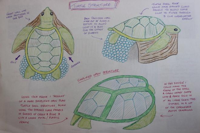 Sea turtle concept